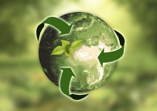 Acquaviva è sempre più eco-friendly: arrivano i bicchieri biodegradibili in PLA.